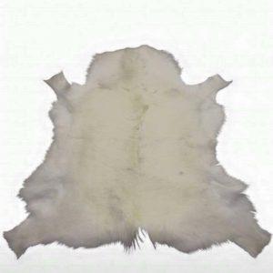 Arctic White Reindeer Rug